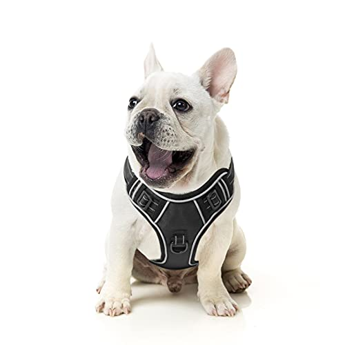EAVSOW Dog Harness, No Pull Pet Harness with Front & Back 2 Leash Attachments, Adjustable Reflective Dog Vest for Outdoor Walking Training Control (S, Blue)