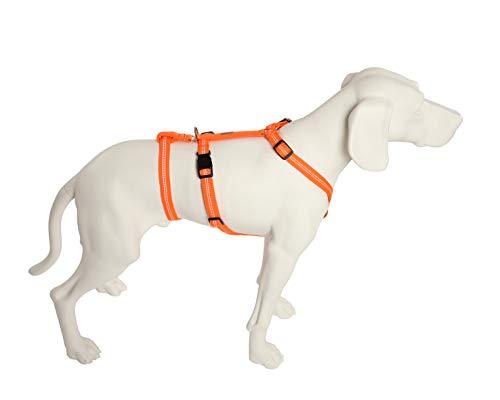 Feltmann No Exit ausbruchsicheres Hundegeschirr für Angsthund, Sicherheitsgeschirr für Pflegehunde, Panikgeschirr, Super Soft, Neonorange, Bauchumfang 55-75 cm, 20 mm Bandbreite