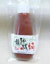 化学農薬・化学肥料不使用 「龍神梅」絹梅(つぶし梅) チューブ入り 180g