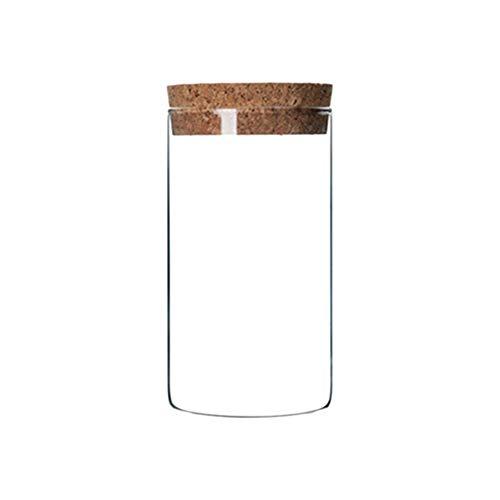ASDAD 6/1 STÜCKE 300 ML Transparent Glas Vorratsglas Tank Verschlossenen Dosen Lebensmittel Blume Tee Trockenfrüchte Körner Vorratsbehälter Mit Korken,1PC