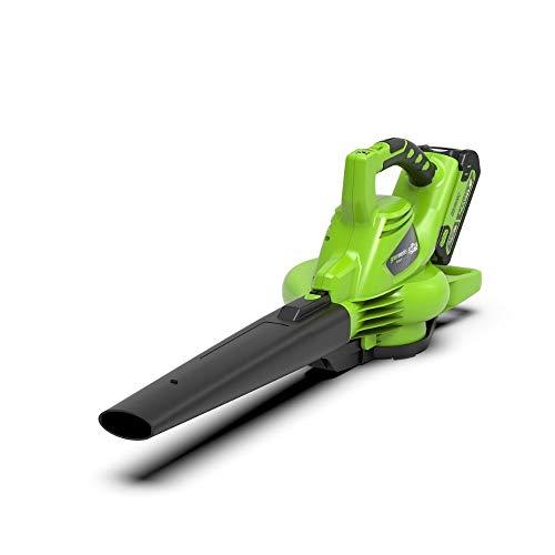 Greenworks Tools aspirateur et souffleur de feuilles sans fil 2en1 GD40BV (Li-Ion 40 V 280 km/h vitesse de l'air, 45l sac collecteur, régulation de la vitesse, sans batterie ni chargeur) 24227