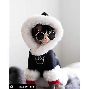 Kotomoda Hairless Cat's Clothes Extra Hoodie Dark Lord