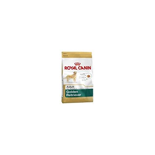 ROYAL CANIN Golden Retriever pienso para Golden Retriever