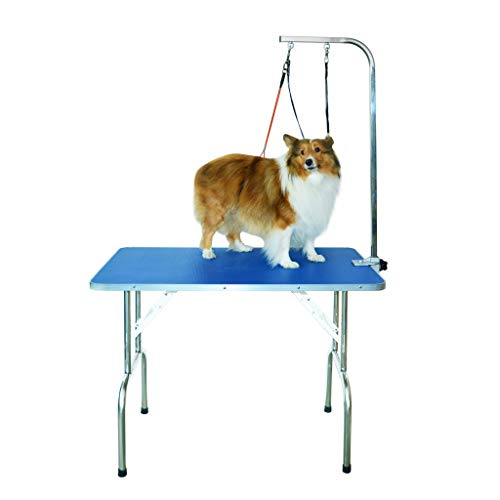 Gravitis Pet Supplies Professional Dog Grooming Table – A sturdy, portable folding table for...
