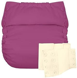 Flip Reusable Potty Training Cloth Diaper - Shell with Side Panels (Dazzle/Noodle)
