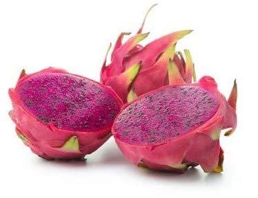 Pitahaya Drachenfrucht rot Hylocereus megalanthus 10 Samen