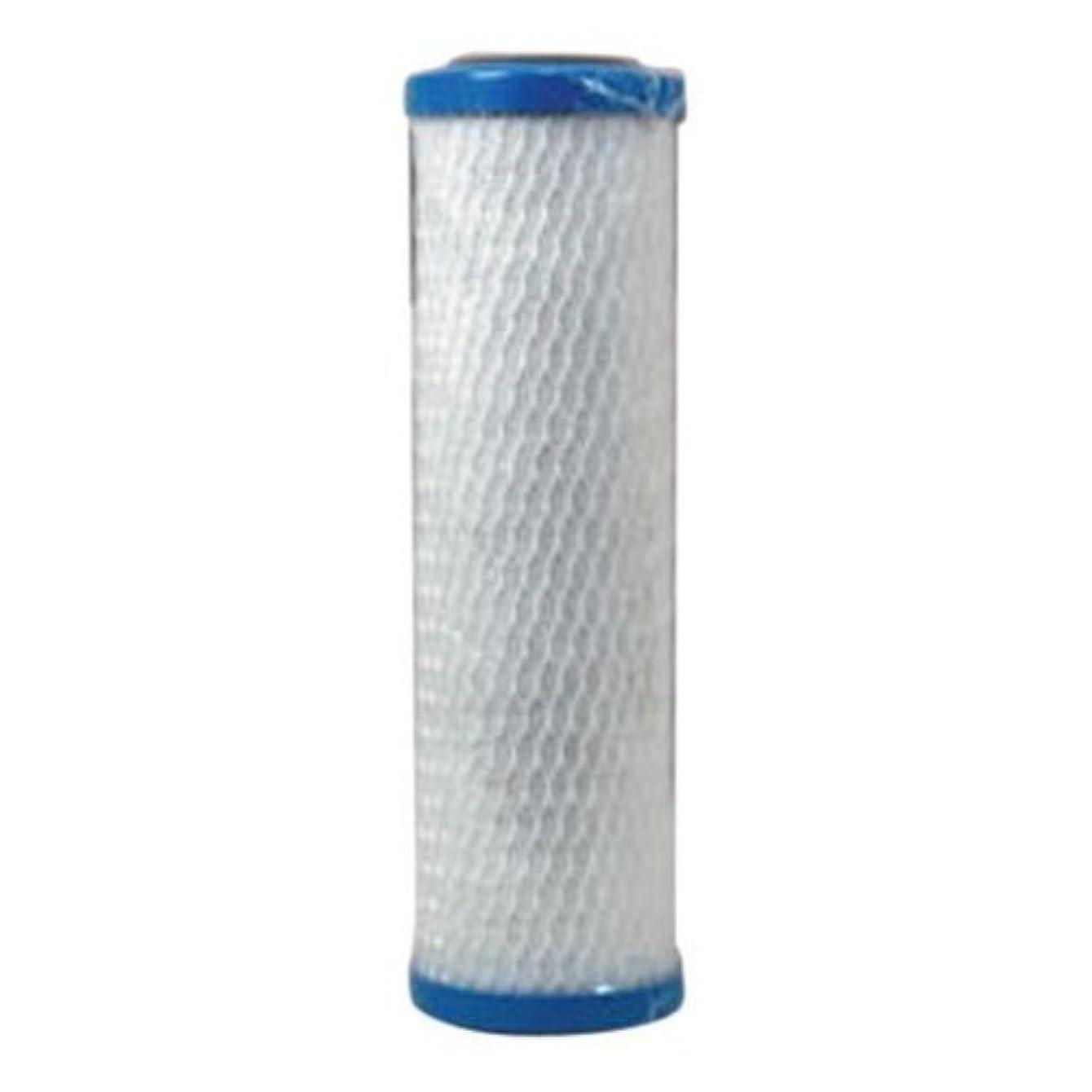 Watts MAXVOC-975 0.5 micron 20,000 gallons filtering capacity