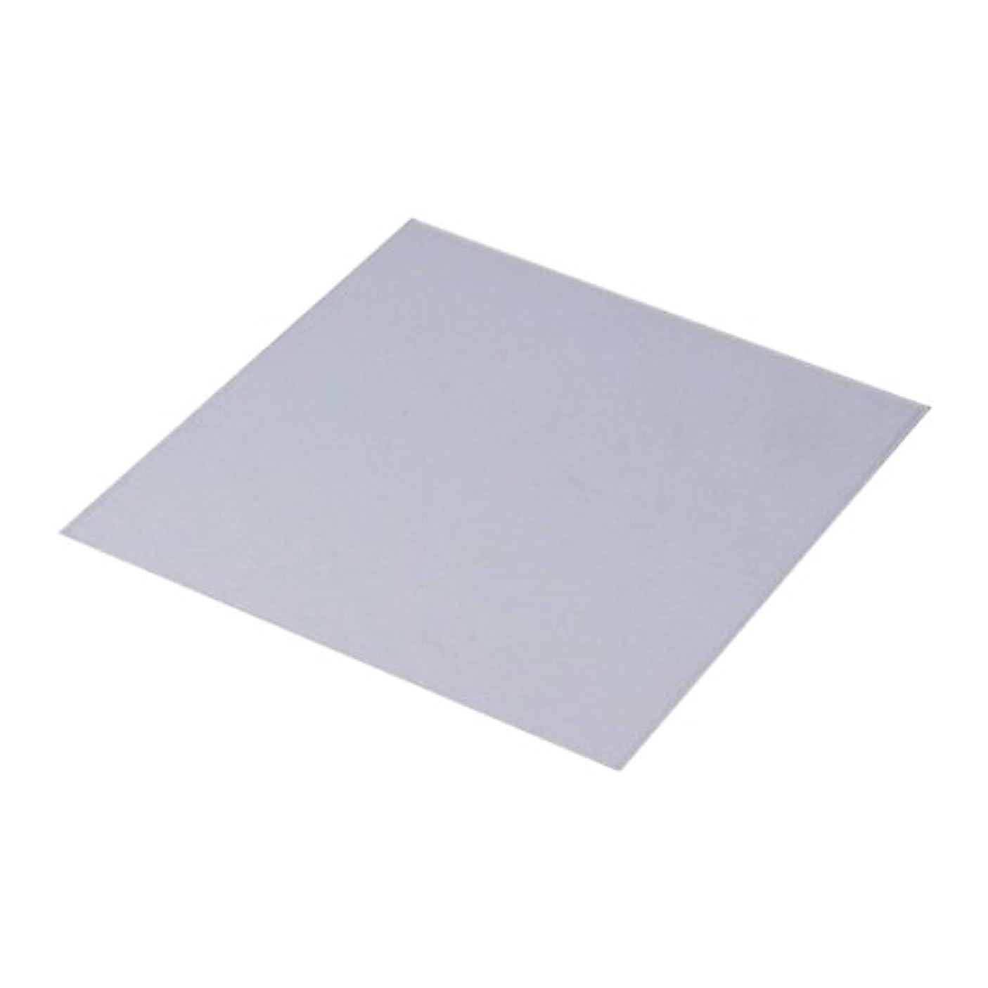 仮定、想定。推測インディカメトロポリタン八幡ねじ シリコン板 10×0.1×10cm 1個