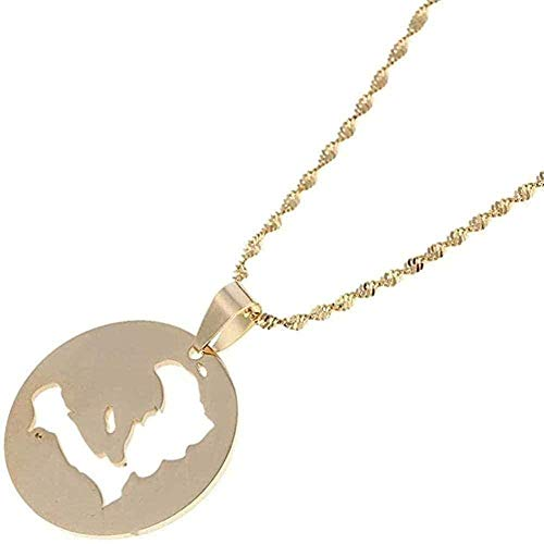 BEISUOSIBYW Co.,Ltd Collar de Acero Inoxidable Collar Colgante de Tarjeta de Haití Collares para Mujeres invitadas Joyas de Oro Pegatinas haitianas