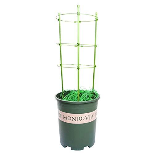 HOPQ Langlebiger kunststoffbeschichteter Stahlschlauch Blumensäule Tomatengurke Kletterpflanze Blumenständer DIY Home Gardening Plant Stand