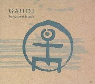 gaudi bass sweat and tears