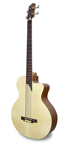 APC Instruments BG100 MX CW Bass Gitarre