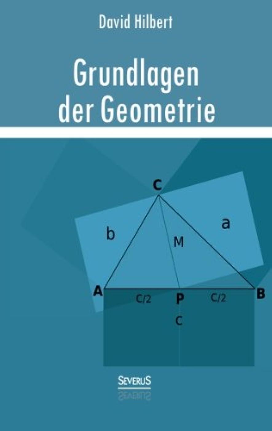 言語学習人Grundlagen Der Geometrie