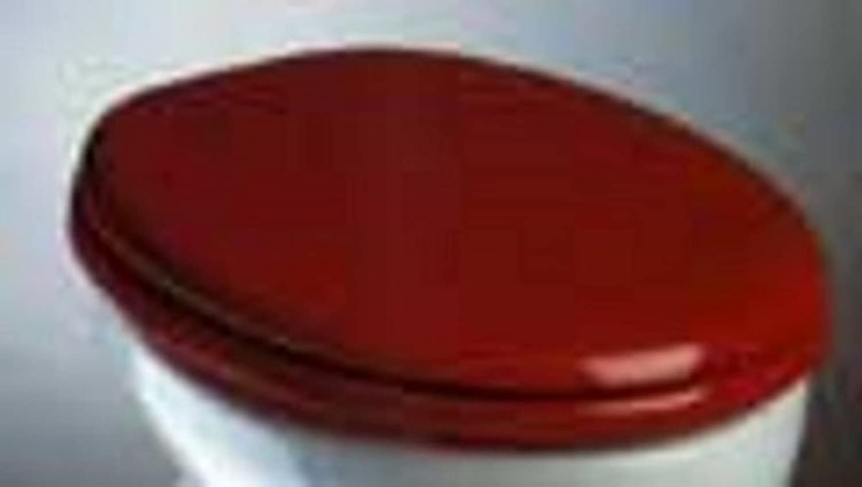 Adob Toilet Seat High Gloss Wooden CAPRI Polyester, manhattan 52150