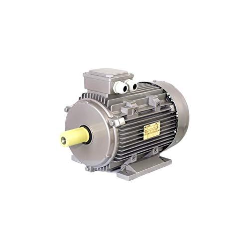 Dreiphasen-Elektromotor mit 4,0 kW (5,5 PS) 4-polig, 1400 U/min Mec 112 B3 Seipee
