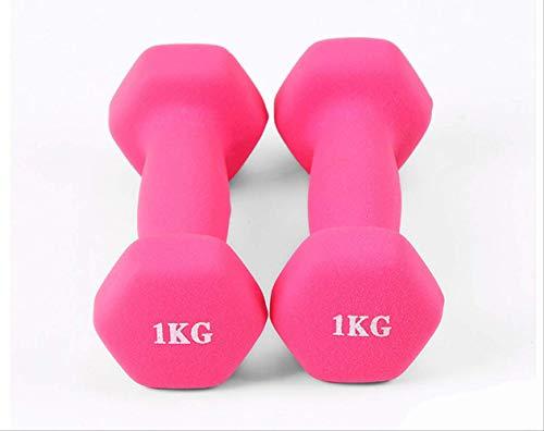 wolong 1 kg x 2 Stück Damen Hantel Übung Yoga Tauchen Übung Hantel Kunststoff Aerobic Tanz Fitnessgeräte 1 kg 1 Stück Rose Rot