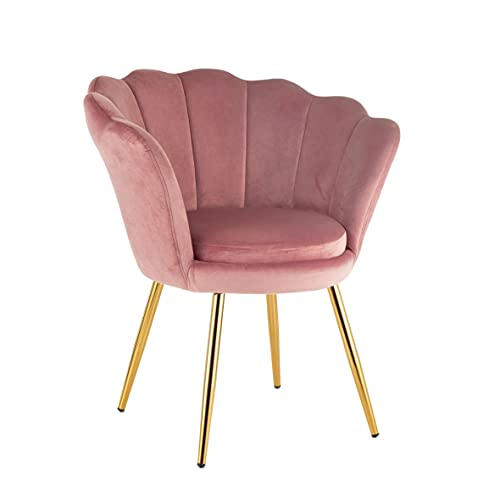 Sillón acolchado con respaldo de concha hecho de terciopelo rosa polvo y patas doradas, ideal para salón o dormitorio, muy cómodo y relajante, 69 x 71 x 84 cm