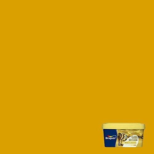 BRUGUER 5160755 Pintura PLÁSTICA Colores M.Contrast Amarillo Camel 2,5 L, Negro