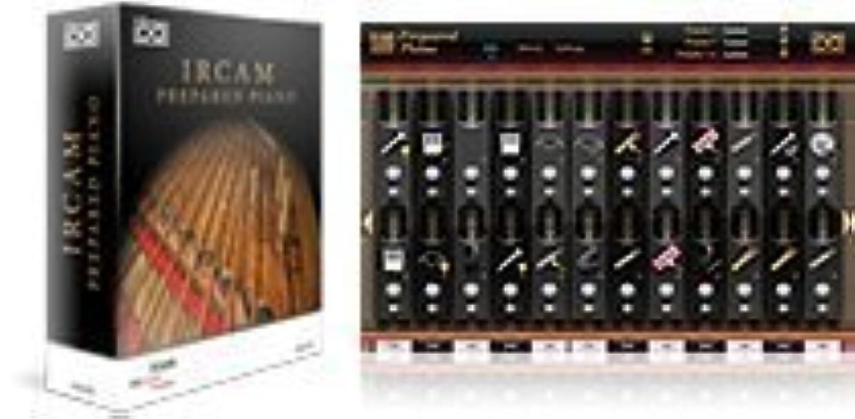 印をつけるしおれた物理IRCAM Prepared Piano -ピアノ音源-