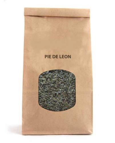 Hojas de Pie de León Planta Natural 120g Alchemilla Vulgaris para Infusiones