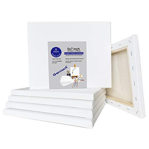 Catálogo para Comprar On-line Lienzos preestirados - los preferidos. 6