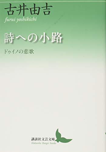 詩への小路 ドゥイノの悲歌 (講談社文芸文庫)
