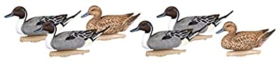 Flambeau Outdoors 8022SUV Storm Front 2 Pintail Decoys, Classic Floaters - 6-Pack