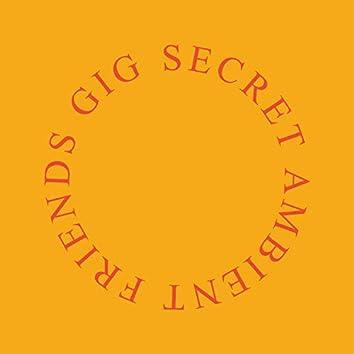 Secret Ambient Friends Gig