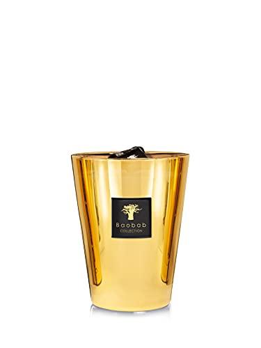 Baobab Kerzen, Glas, Gold, 24 x 10 cm