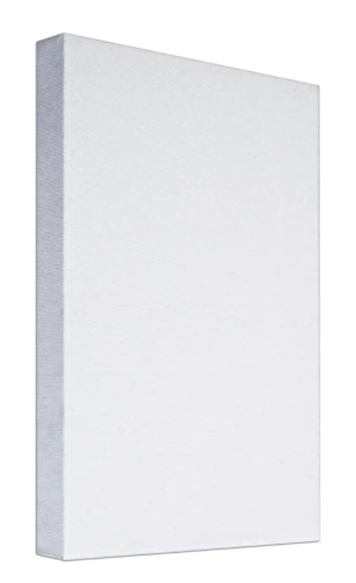 Art & Art 7155.0?Frame Canvas Painters Fir Wood/Cotton, White, 100?x 50?x 3.5?cm