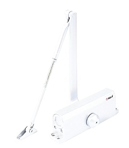 PALMAT Automatischer Einstellbarer Hydraulischer Türschließer (80-120 Kg, Weiß)