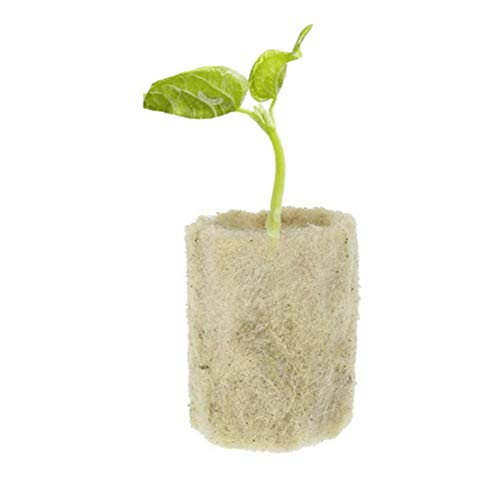 Bolsas para cultivo, Rockwool arranque enchufes, lana de roca Cubo de propagación hidropónica Hortalizas bloque cilíndrico de semillero invernaderos de cultivo Sistema Complementos jardinería