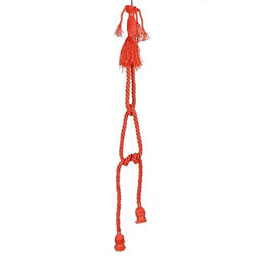 Lámpara colgante de doble cabezal de 1 m, lámpara de araña con base de lámpara de cuerda de nylon E27, para restaurante comercial en casa(Orange)