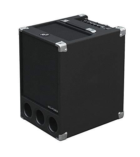 Super Flightcase/BG-300 Bass Combo