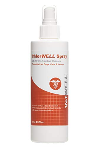 VetWELL Chlorhexidine 4% Spray