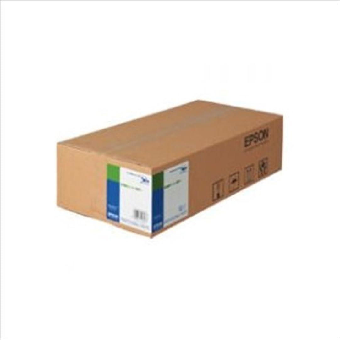 焦がすエンティティ縮約セイコーエプソン A0 普通紙ロール 厚手 約841mm幅×50m(2本入り) MAXART用 EPPP90A0