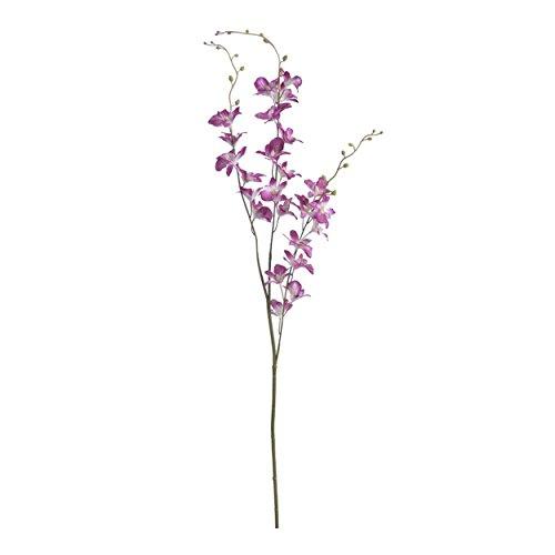 Kahnorchidee Cymbidium 98 cm rosa/bianco