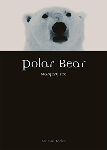 Polar Bear (Animal) by Margery Fee