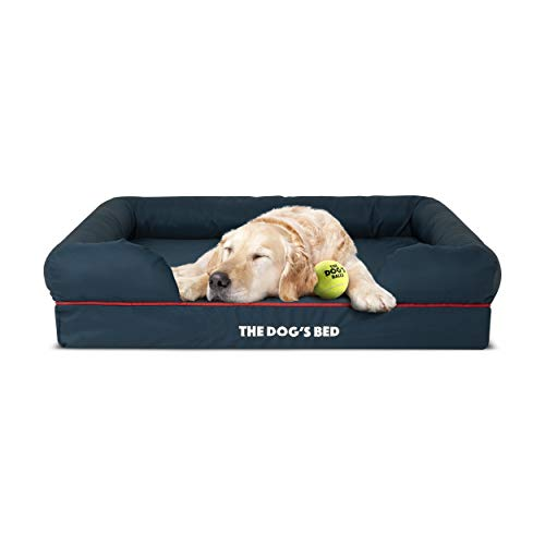 The Dog's Bed Orthopedic Dog Bed Large Blue/Red 36x27 Memory Foam, Pain Relief: Arthritis, Hip & Elbow Dysplasia, Post Surgery, Lameness, Supportive, Calming, Waterproof Washable Cover