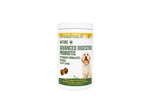 Broadreach Nature + Advanced Digestive Probiotic Chews for Dogs 1 x 60