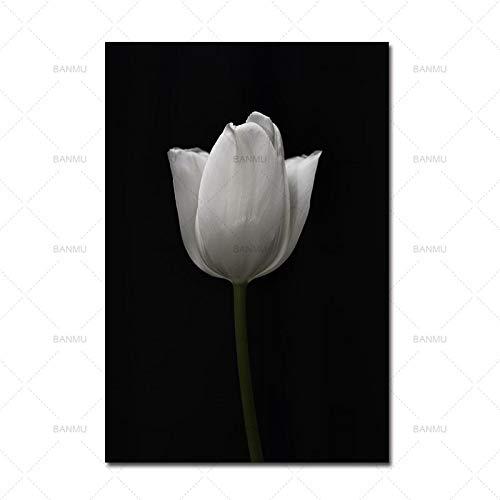 Cartel Impresión en lienzo Grabado Flor Naturaleza Pintura de la pared Sala de estar Art Deco Pintura 50X70cm