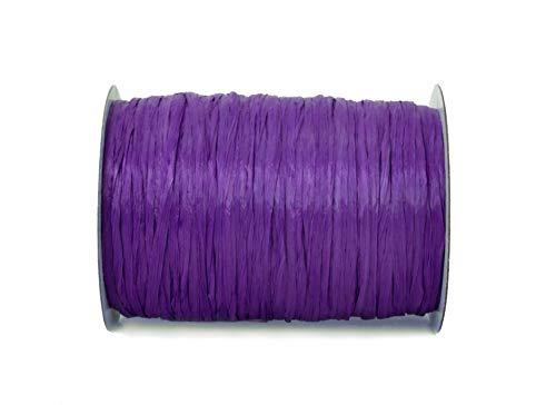 "ISPIE Rayon Raffia Crochet Yarn 1/4"" 100-Yard Indigo (Purple Series)"