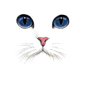 Gato Borralheiro