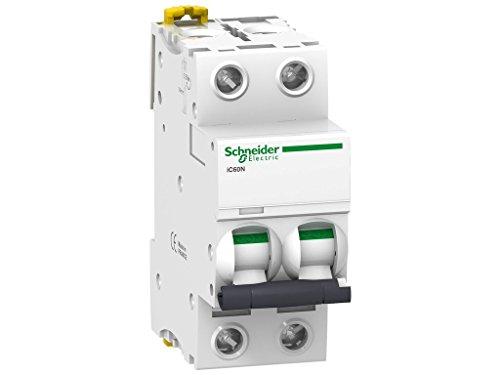 Schneider Electric A9F79240 Interruptor Automático Magnetotérmico Ic60N, 2P, 40A, Curva C