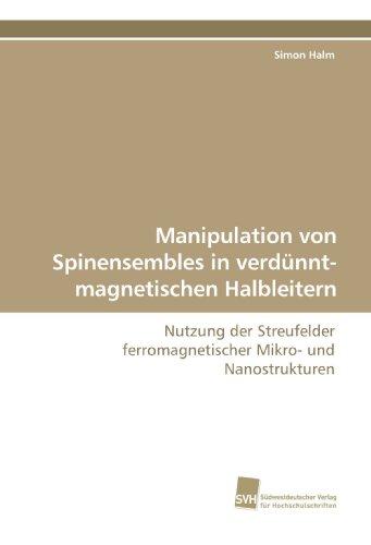 Manipulation von Spinensembles in verdünnt-magnetischen Halbleitern: Nutzung der Streufelder ferromagnetischer Mikro- und Nanostrukturen