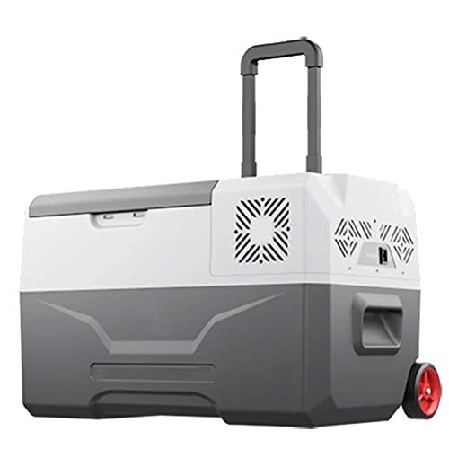 QSWL Refrigerador portátil refrigerador (40L) Refrigerador de compresor eléctrico Adecuado para Acampar, Viajar, Pesca al Aire Libre 12/2 4V DC y 100/24 0V AC (Color : A, Size : 24V 110V 220V)