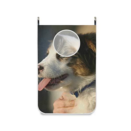 XiangHeFu Grote wasmand grappige hondenmand opvouwbare huisdeur hangende stoffen zak