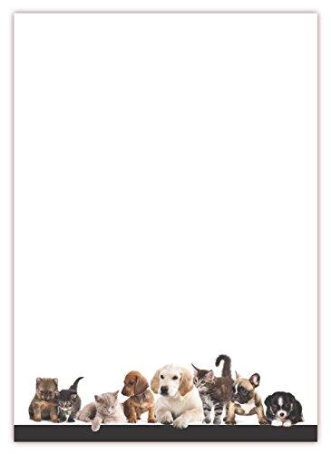 LYSCO Motiv Briefpapier (Tiere-5042, DIN A4, 25 Blatt). Einseitig bedrucktes Briefpapier, sehr gut beschreibbar, Motivpapier für alle Drucker/Kopierer geeignet Motiv Tiere Hunde Katzen Tierhandlung Zoo Tierbedarf