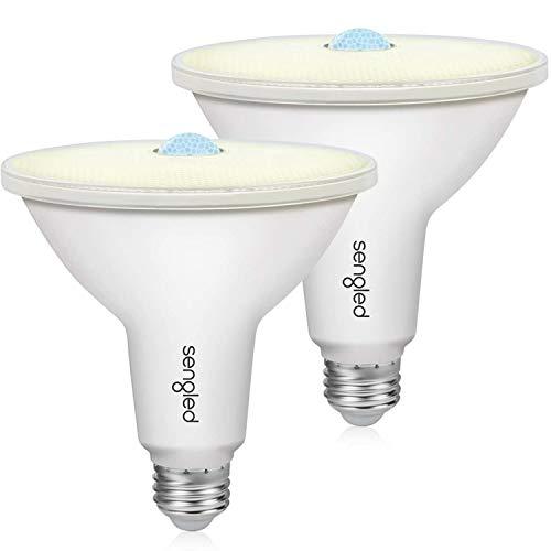 See the TOP 10 Best<br>100 Watt Outdoor Flood Light Bulb