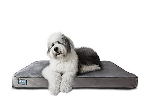 Best Orthopedic Dog Bed for Arthritis - Better World Pets Orthopedic Dog Bed